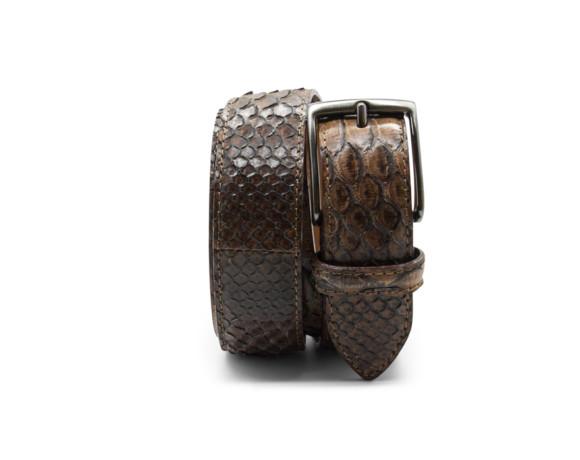 Brown | Python